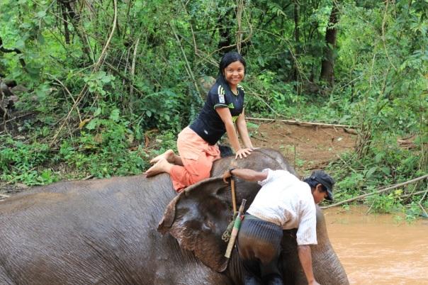 Czysta radość z możliwości wykąpania słonia. fot. Życie w tropikach