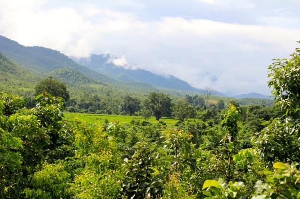 Dla takich widoków warto odwiedzieć Green Hill Valley Elephant & Reforestation Camp. fot. Życie w tropikach